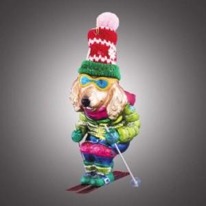 """Собака ретривер """"Горнолыжник"""" в сине-зеленом костюме"""