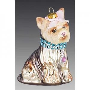Собака Йорк Модница пепельно-золотистая